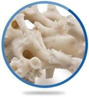 Coral Calcium®