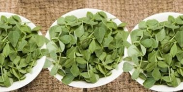 Ingredient, Fenugreek