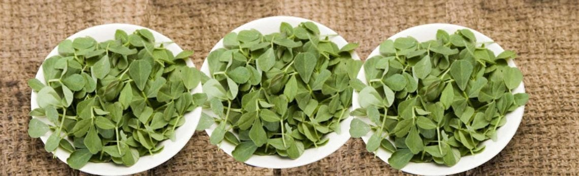 Ingredient Spotlight: Fenugreek
