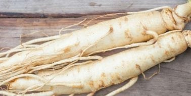 Ingredient Spotlight, Panax Ginseng