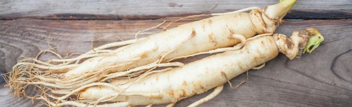 Panax Ginseng: The King of Natural Energy Supplements