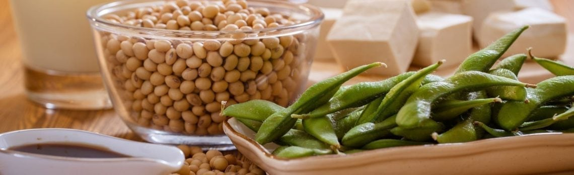 The Dangerous Link Between Soy and Libido