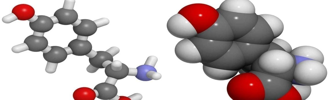 Ingredient Spotlight: L-Tyrosine for Women