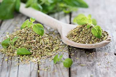 The Top 6 Immune Boosting Herbs for Cold and Flu Season 1
