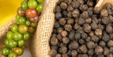 Potent Black Pepper Extract Piperine Aids Metabolism, Digestion and More
