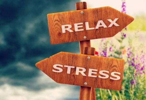 The Ultimate Stress Guide: Everything You Need to Know About Stress & Relaxation 1